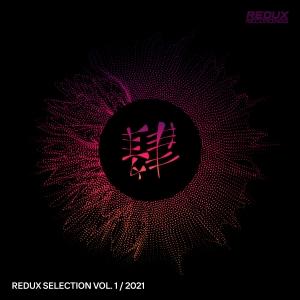 RDXSEL052 : Various Artists - Redux Selection, Vol. 1 / 2021