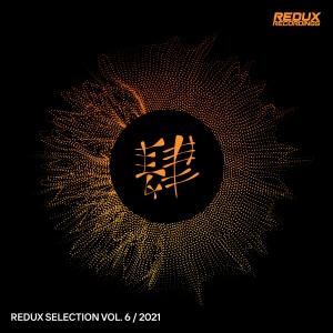 RDXSEL057 : Various Artists - Redux Selection Vol. 6 / 2021